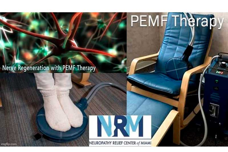Effects of electromagnetic field (PEMF) exposure at different frequency and duration on the peripheral nerve regeneration - Effects of electromagnetic field (PEMF) exposure at different frequency and duration on the peripheral nerve regeneration